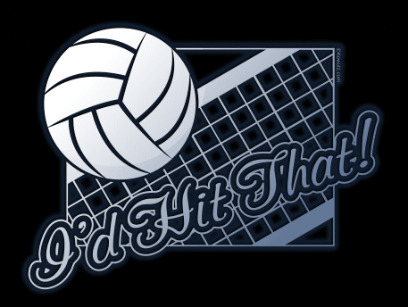 T-shirt concept: Volleyball - I'd hit that!